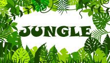 themes-jungle