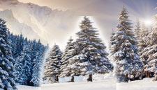 themes-winter
